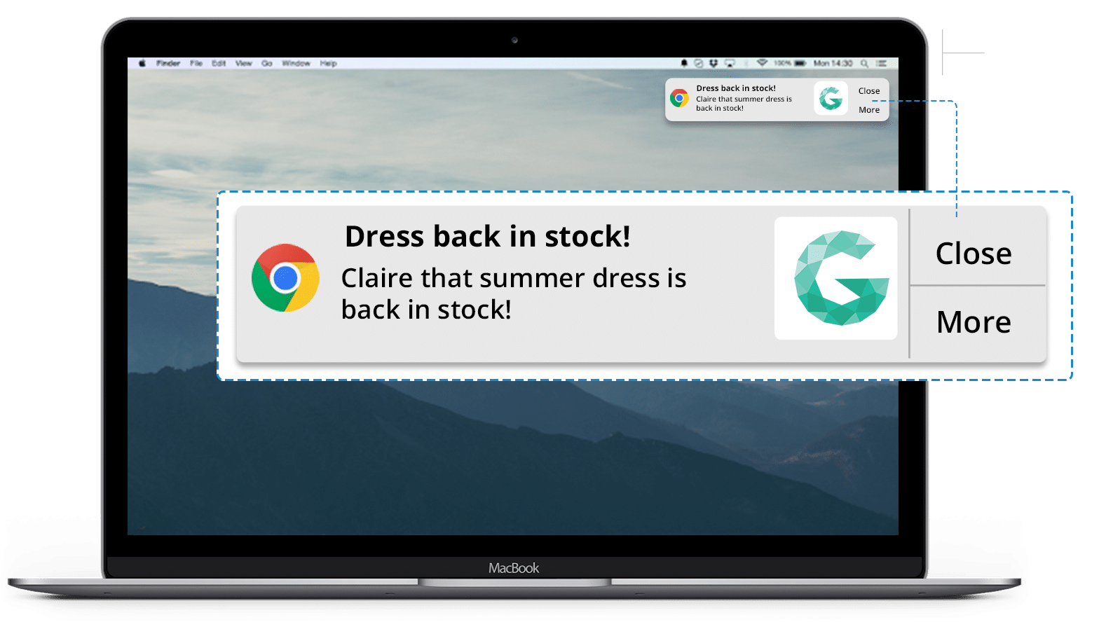 """back in stock"" web push"